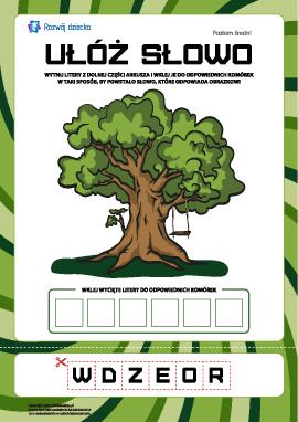 """Ułóż słowo """"drzewo"""": poziom średni"""