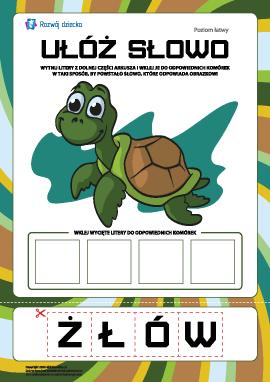 """Ułóż słowo """"żółw"""": poziom łatwy"""