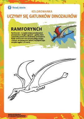Kolorowanka dinozaury: ramforynch