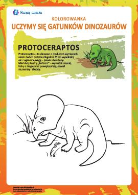 Kolorowanka dinozaury: protoceratops