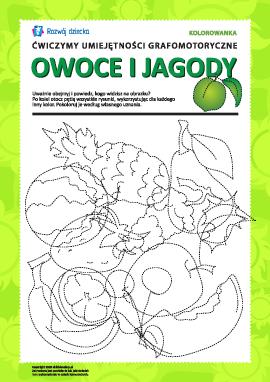 Umiejętności grafomotoryczne: owoce i jagody nr 2