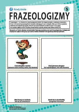 Frazeologizmy nr 5 (język polski)