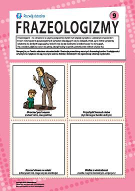 Frazeologizmy nr 9 (język polski)