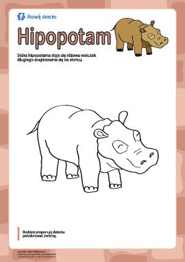 "Kolorowanka ""Hipopotam"""