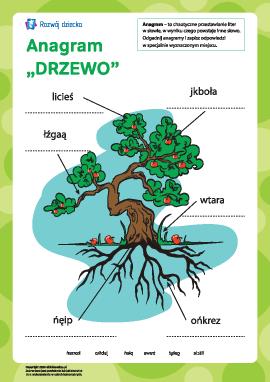"""Anagram """"Drzewo"""""""