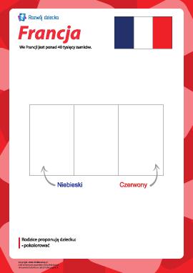 """Kolorowanka """"Flaga Francji"""""""