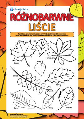 Kolorowe liście: kolorujemy i uczymy się kolorów