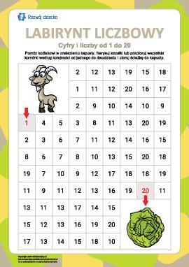 Labirynt liczbowy nr 7: liczby od 1 do 20