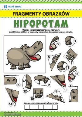 nr 2 Poszukujemy fragmentów obrazków: hipopotam