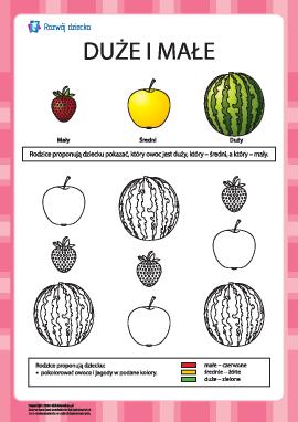 Arbuz, jabłko oraz truskawka — co jest większe?