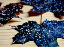Malowniczy wszechświat na jesiennym liściu