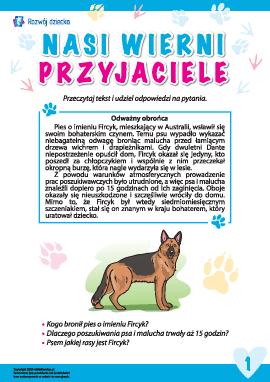 Historie o wiernych zwierzętach: pies Fircyk