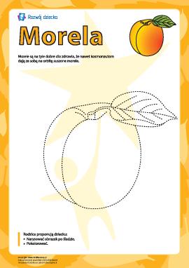 """Kolorowanka """"Morela"""""""