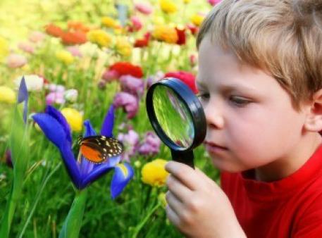 Nauka dla małych dzieci: podstawy przyszłej wiedzy