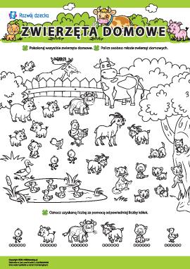 Zwierzęta domowe: uczymy się liczenia