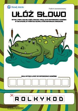 """Ułóż słowo """"krokodyl"""": poziom zaawansowany"""