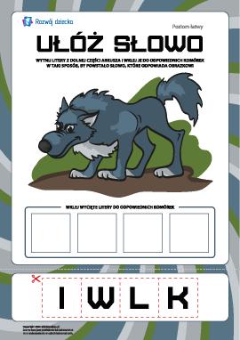 """Ułóż słowo """"wilk"""": poziom łatwy"""
