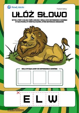 """Ułóż słowo """"lew"""": poziom łatwy"""