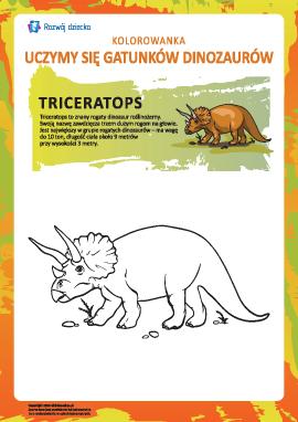 Kolorowanka dinozaury: triceratops