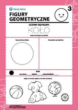 Figury geometryczne: badamy koło