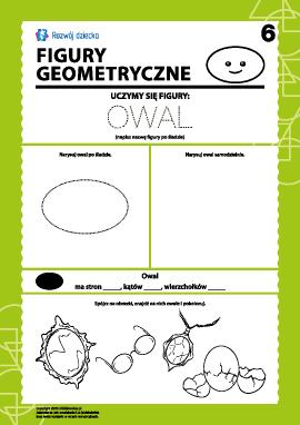 Figury geometryczne: badamy owal