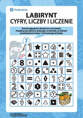 Labirynt: liczymy i uczymy się cyfr oraz liczb 1