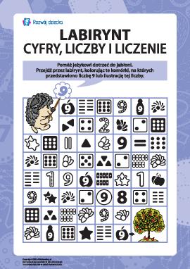 Labirynt: liczymy i uczymy się cyfr oraz liczb 9