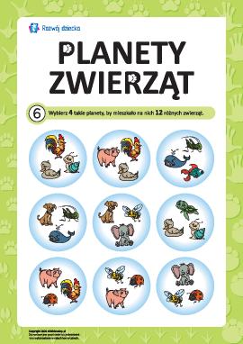 """Łamigłówka """"Planeta zwierząt"""" nr 6"""