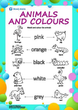 Nazwy kolorów w języku angielskim: pokoloruj zwierzęta