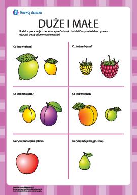 Który owoc jest większy, a który — mniejszy