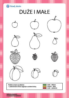 Kolorowanka — duże, średnie oraz małe owoce