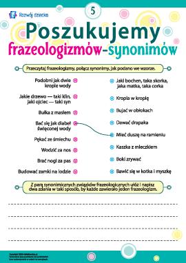 Poszukujemy frazeologizmów-synonimów nr 5 (język polski)