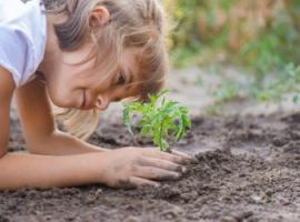 Uczymy dziecko dbania o środowisko