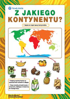 Z jakiego kontynentu: produkcja towarów